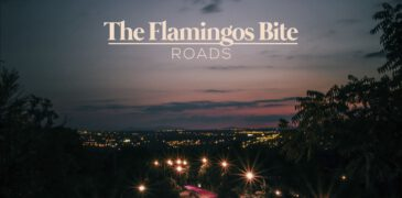 The Flamingos Bite estrenan nuevo single «Roads»