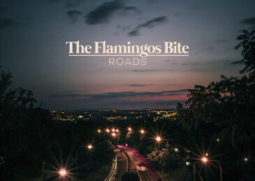 The Flamingos Bite estrenan nuevo single «Roads»