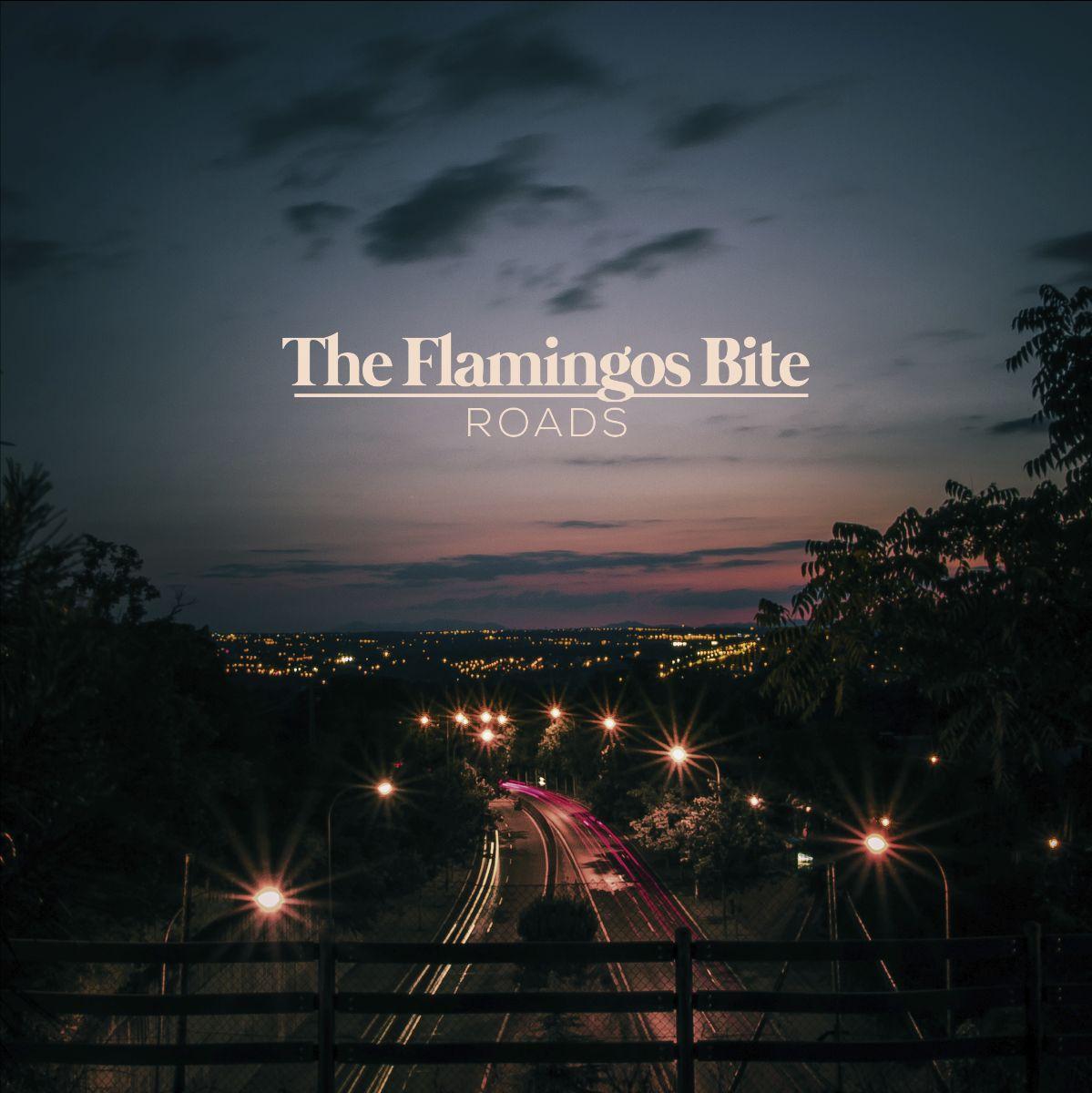 The Flamingos Bite - Roads